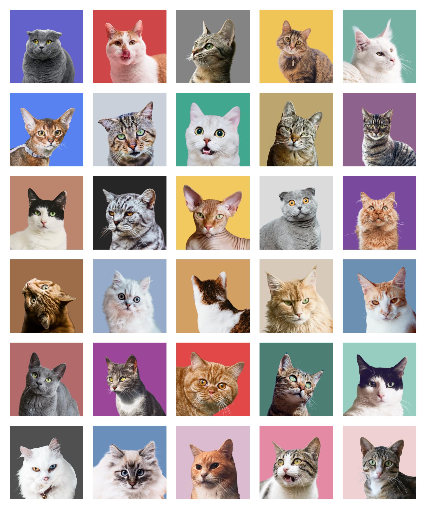 免费动物头像素材插图1