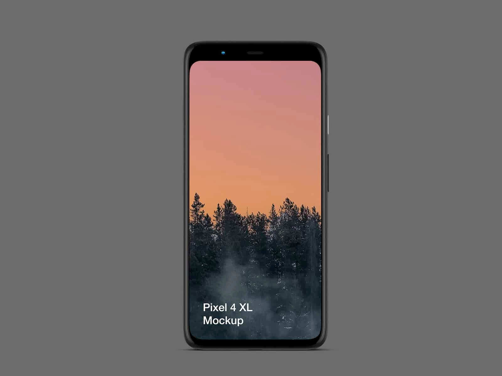 免费手机Pixel 4和笔记本Pixelbook Go样机插图1